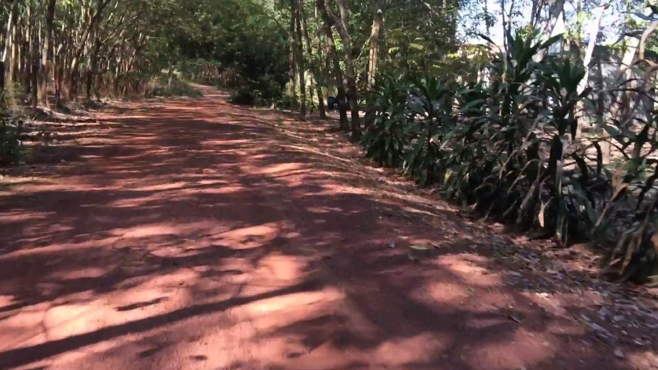 Con đường đất đỏ
