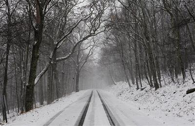 Vòng Tròn Tuyết
